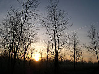 Sunrise at Willowbrook Wildlife Center © Jason Sturner 72