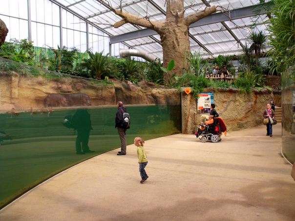 halloween zoo koeln